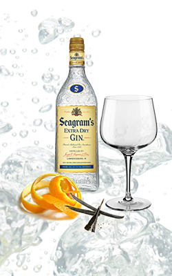 gintonic seagrams´s - Giona Premium Glass